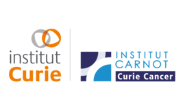 Sideros Innovation traitement cancer Institut curie carnot